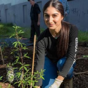 Miss Earth Australia 2017 finalists planting trees